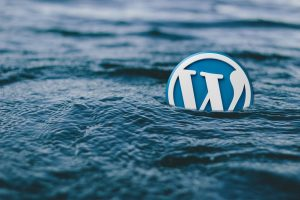 limpiar-html-wordpress